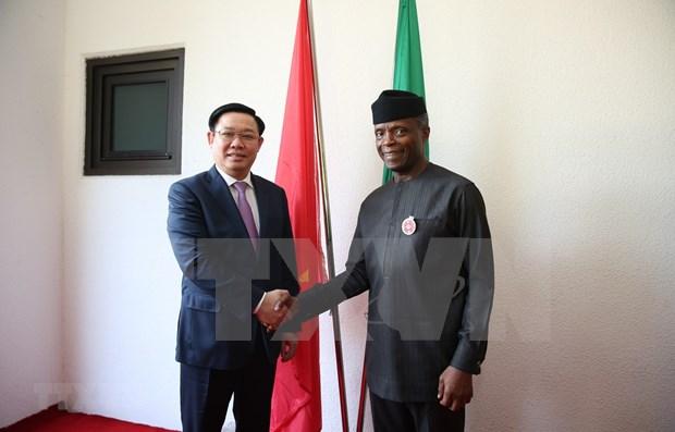 Desarrollo de Vietnam incentiva el progreso de Nigeria hinh anh 1