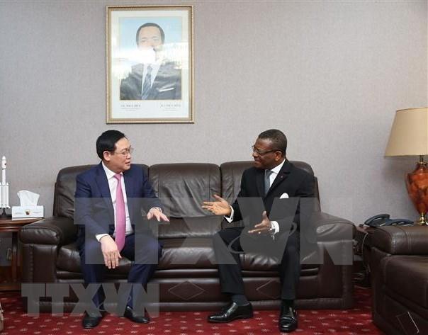 Muestra Vietnam interes en impulsar asociacion multifacetica con Camerun hinh anh 1