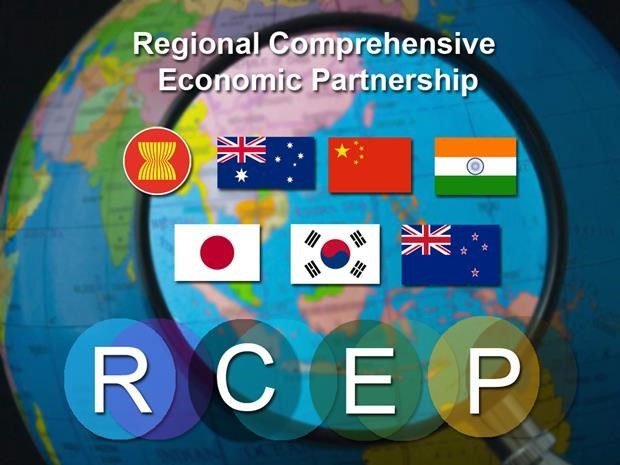 Asiste Vietnam a reunion ministerial preparatoria del RCEP hinh anh 1