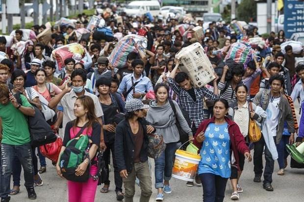 Se unen Camboya, Laos y Myanmar para proteger a trabajadores migrantes hinh anh 1