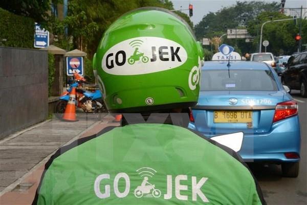 Apunta empresa transportista Go-Jek a expandir sus operaciones fuera de Indonesia hinh anh 1