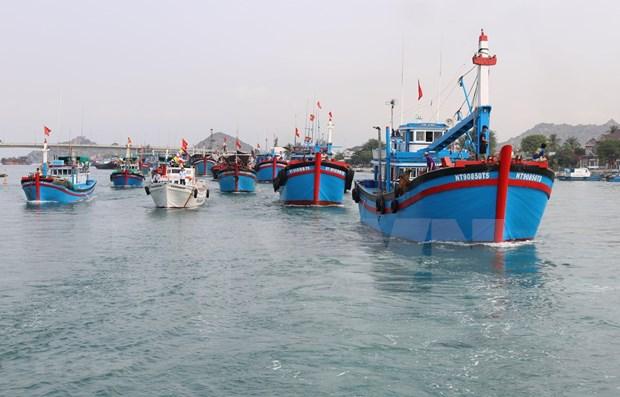 Revisa Comision Europea implementacion de medidas contra la pesca ilegal en Vietnam hinh anh 1