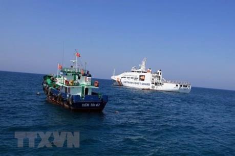 Resaltan apoyo internacional a postura de Vietnam en tema del Mar del Este hinh anh 1