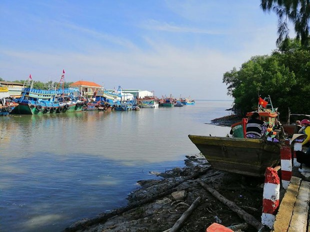 Fortalece provincia vietnamita lucha contra pesca ilegal hinh anh 1