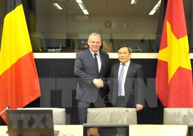 Intensifican Vietnam y Belgica la cooperacion economica hinh anh 1
