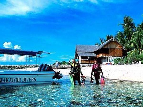Disminuye el numero de turistas extranjeros que llegan a Indonesia hinh anh 1