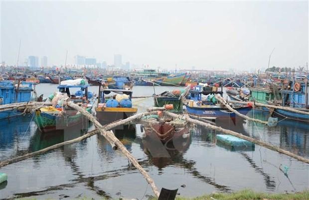 Se mantiene Vietnam alerta ante la llegada del tifon Nakri hinh anh 1