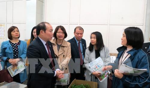 Desea Vietnam aprender del modelo japones de cooperativas multiservicios hinh anh 1