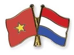 Dispuesta organizacion no gubernamental neerlandesa a respaldar a provincia vietnamita hinh anh 1