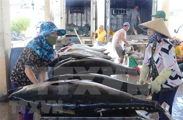 Vietnam- mayor exportador de atun enlatado a Estados Unidos hinh anh 1