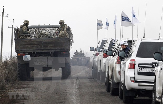 Sigue Vietnam de cerca la situacion en Ucrania hinh anh 1