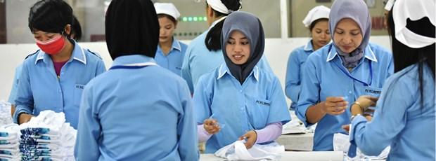 Impone Indonesia alto arancel a importaciones de confecciones textiles hinh anh 1