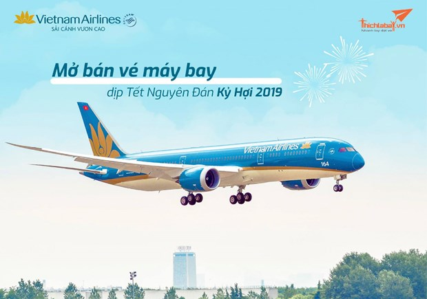 Aumentara Vietnam Airlines vuelos en ocasion de festejos por Ano Nuevo Lunar hinh anh 1