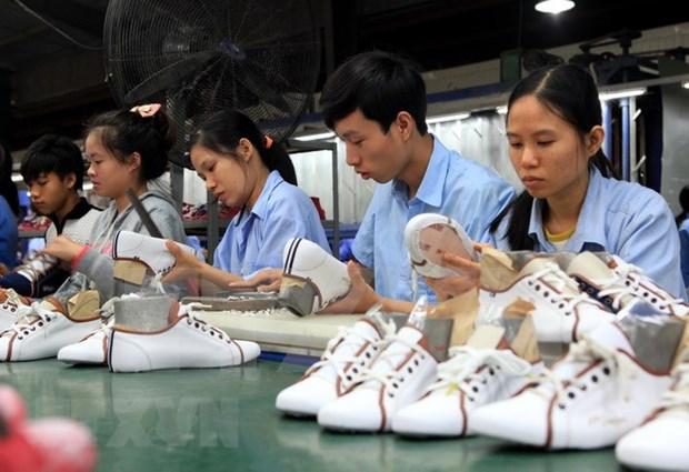 Preven en Vietnam alto crecimiento de exportaciones de cuero y calzado hinh anh 1