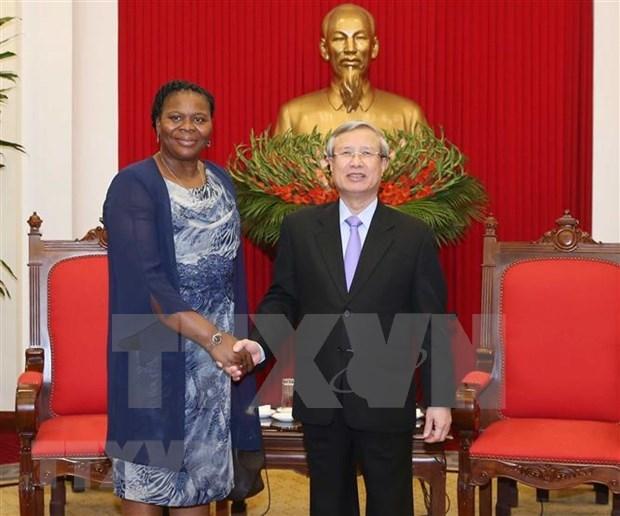 Prioriza Vietnam lazos con Mozambique, afirma alto funcionario del Partido hinh anh 1