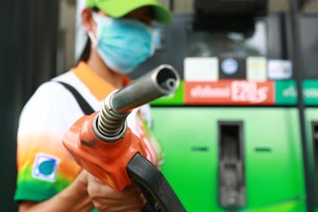 Promueve Tailandia uso de biocombustibles para apoyar agricultura hinh anh 1