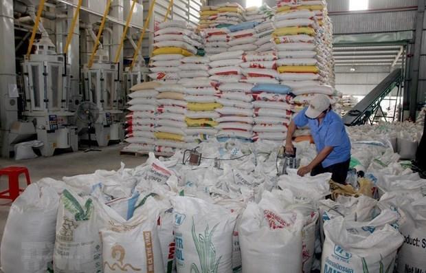 Reconocen al arroz de provincia vietnamita de Soc Trang como el mejor del mundo hinh anh 1