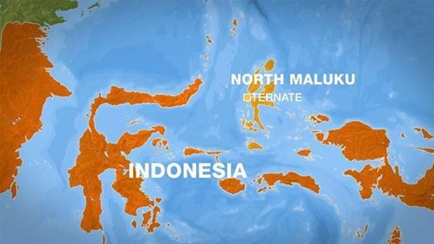 Peligro de tsunami en Indonesia hinh anh 1
