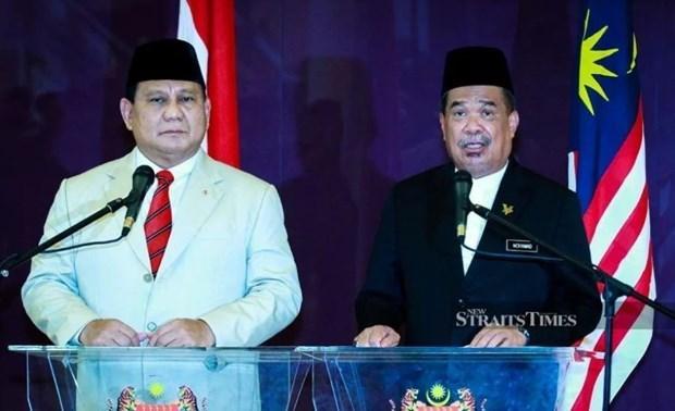Intensifican Malasia e Indonesia cooperacion en defensa hinh anh 1
