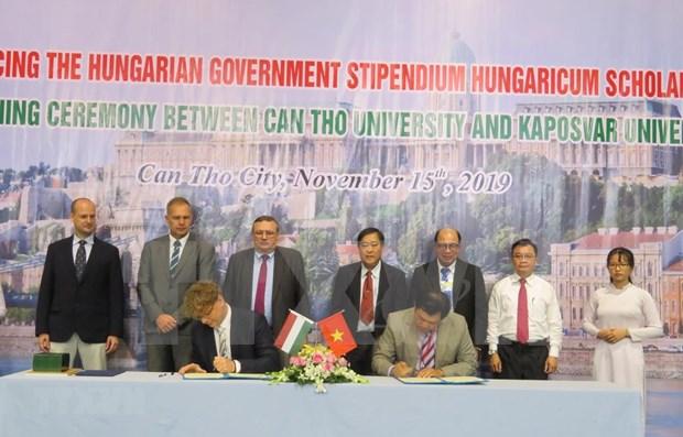 Ciudad vietnamita de Can Tho entabla cooperacion con Hungria en educacion hinh anh 1
