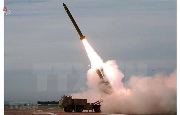 Emite Vietnam decreto gubernamental para reforzar lucha contra proliferacion de armas hinh anh 1