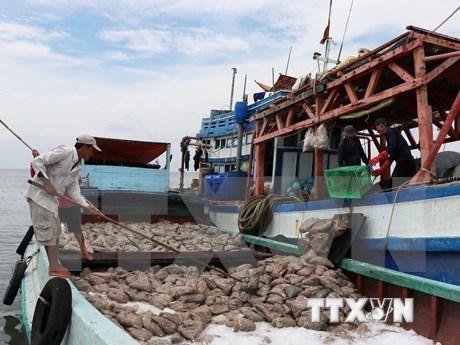 Delegacion europea elogia esfuerzos vietnamitas en implementacion de medidas contra la pesca ilegal hinh anh 1