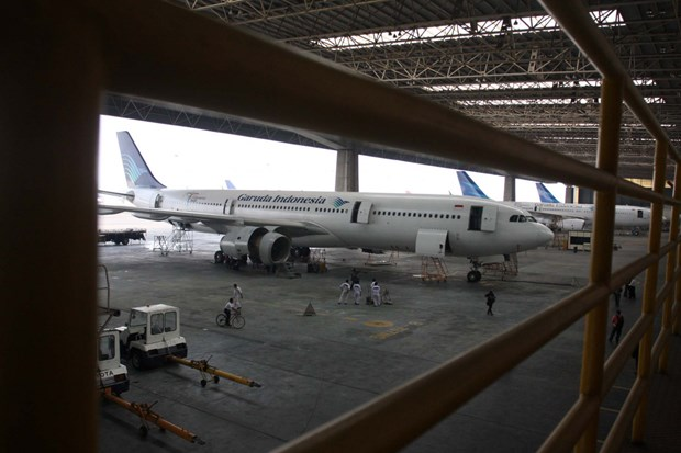 Aumenta sus inversiones en Indonesia empresa lituana de mantenimiento de aeronaves hinh anh 1