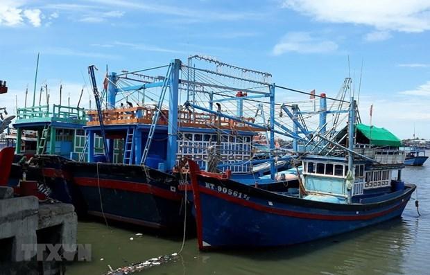 Provincia de Vietnam empenada en reforzar combate contra la pesca ilegal hinh anh 1