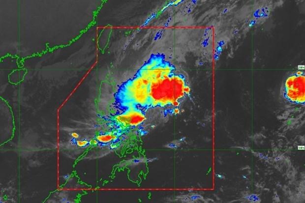 Evacuan miles de filipinos ante avance del tifon Kalmaegi hinh anh 1