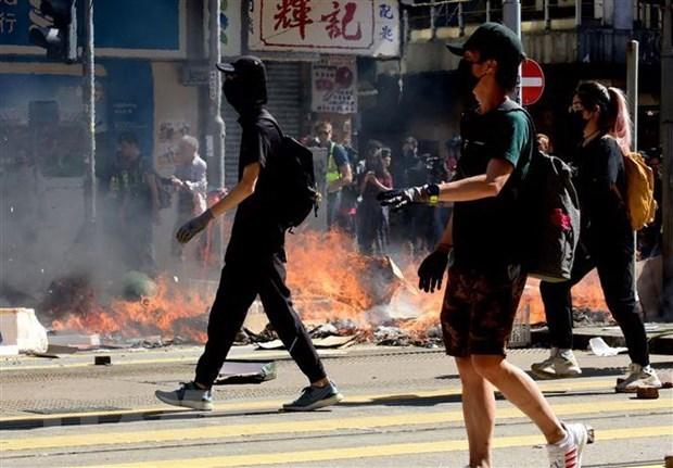 No se reportan perdidas de ciudadanos vietnamitas en Hong Kong, confirma la Cancilleria hinh anh 1