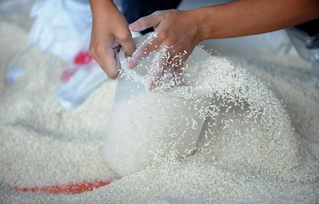 Ordena presidente de Filipinas suspension de las importaciones de arroz hinh anh 1
