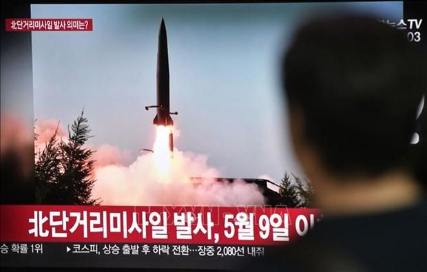 Debaten Indonesia y Corea del Sur plan para la compraventa de armas hinh anh 1