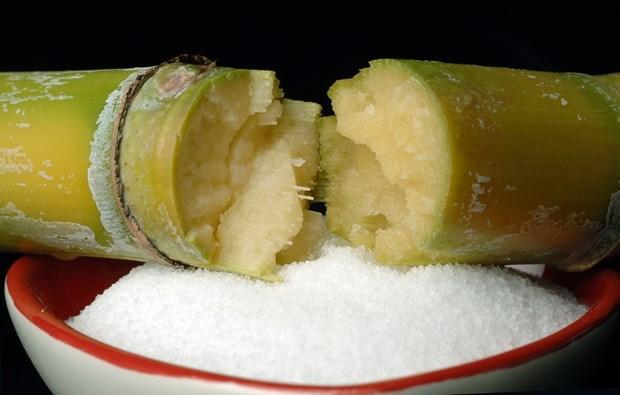 Elimina Vietnam cuotas para importaciones de azucar de ASEAN hinh anh 1