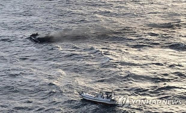 Apoya Embajada de Vietnam en Corea del Sur a familias de pescadores desaparecidos hinh anh 1