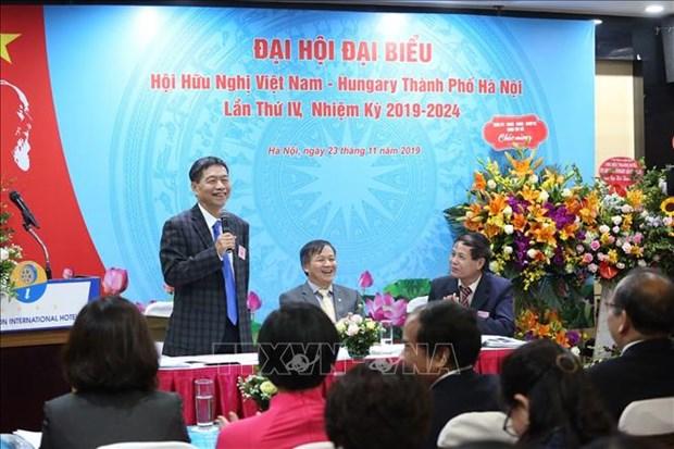 Destacan papel de Asociacion de Amistad Vietnam - Hungria para lazos binacionales hinh anh 1