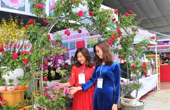 Intensifican Vietnam, Laos y Camboya intercambios en produccion agricola limpia hinh anh 1