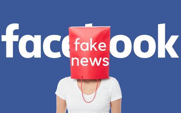 Ordena Singapur a Facebook corregir informaciones hinh anh 1