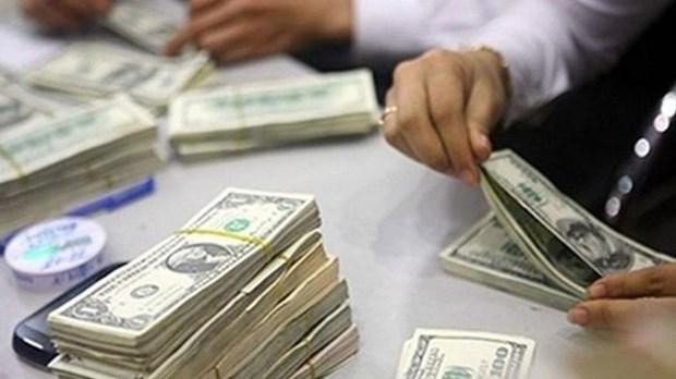 Invierte Vietnam en el extranjero este ano casi 460 millones de dolares hinh anh 1