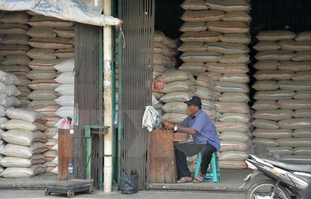 Indonesia apunta a exportar hasta 500 mil toneladas de arroz en 2020 hinh anh 1