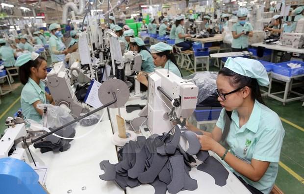 Ingresa Hanoi fondo multimillonario por exportaciones hinh anh 1