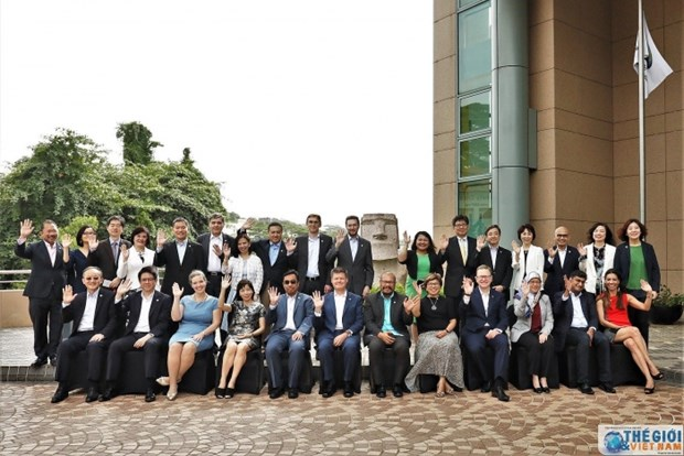 Economias de APEC patentizan acuerdos por intensificar colaboracion hinh anh 1