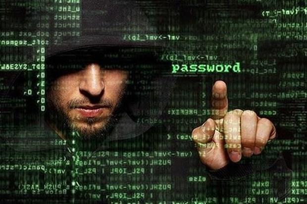 Vietnam se empena en desarrollar capacidad nacional de ciberseguridad hinh anh 1