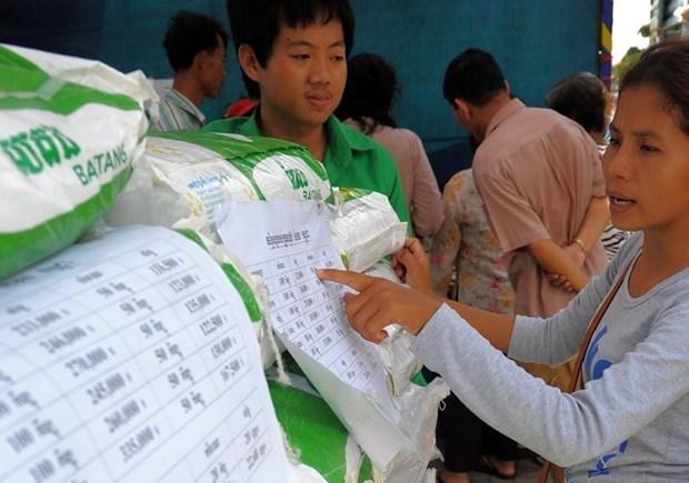 Aumenta Camboya el fondo de asistencia a los productores de arroz hinh anh 1