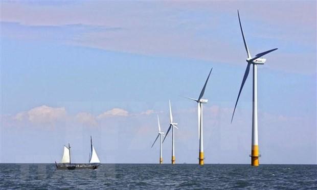 Valoran en Vietnam desarrollo del mayor proyecto sobre energia eolica marina hinh anh 1