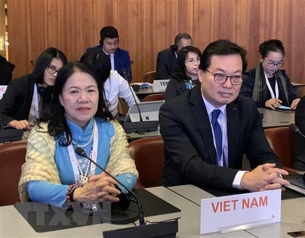 Participa Vietnam en Conferencia Internacional de la Cruz Roja y la Media Luna Roja hinh anh 1