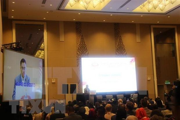 Reafirma Vietnam respaldo a los objetivos planeados para Ano del APEC 2020 hinh anh 1