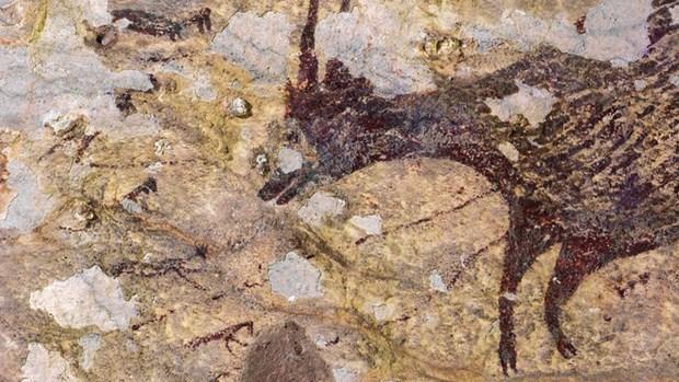 Encuentran en Indonesia la obra de arte mas antigua del mundo hinh anh 1