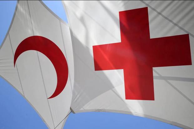 Resaltan participacion activa de Vietnam en movimiento de la Cruz Roja hinh anh 1