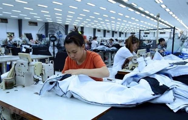 Beneficia Programa de la OIT al sector textil de Vietnam hinh anh 1