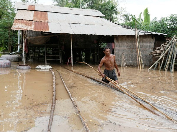 Realizaran Vietnam y Camboya simulacro conjunto de rescate en respuesta a desastres naturales hinh anh 1
